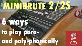 MiniBrute 2/2S: Here are 6 ways to play them paraphonically and polyphonically