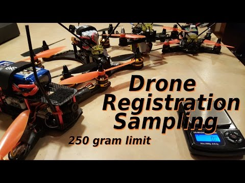 250g Drone Registration - Sample Quad Weights