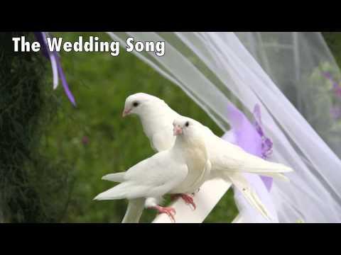 Best Wedding Songs - Piano