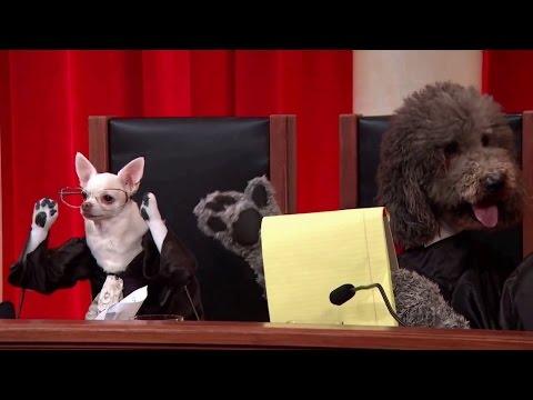 J.D.B. v. North Carolina: Oral Argument - March 23, 2011