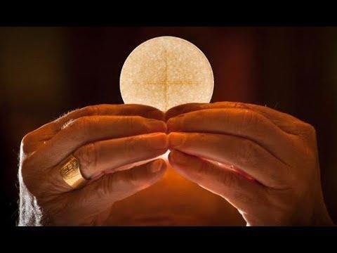 ¿Quieres conocer la verdad de la Eucaristía?