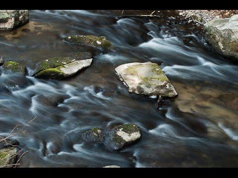 Mianus River Gorge Preserve