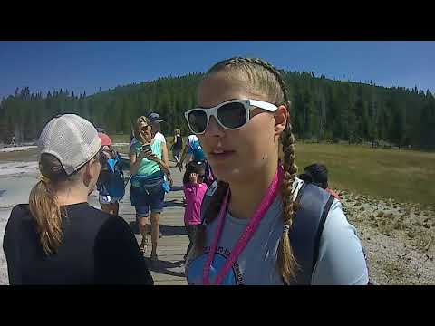 Girls Week 2018 Day 2 - Yellowstone's Baby Bison!