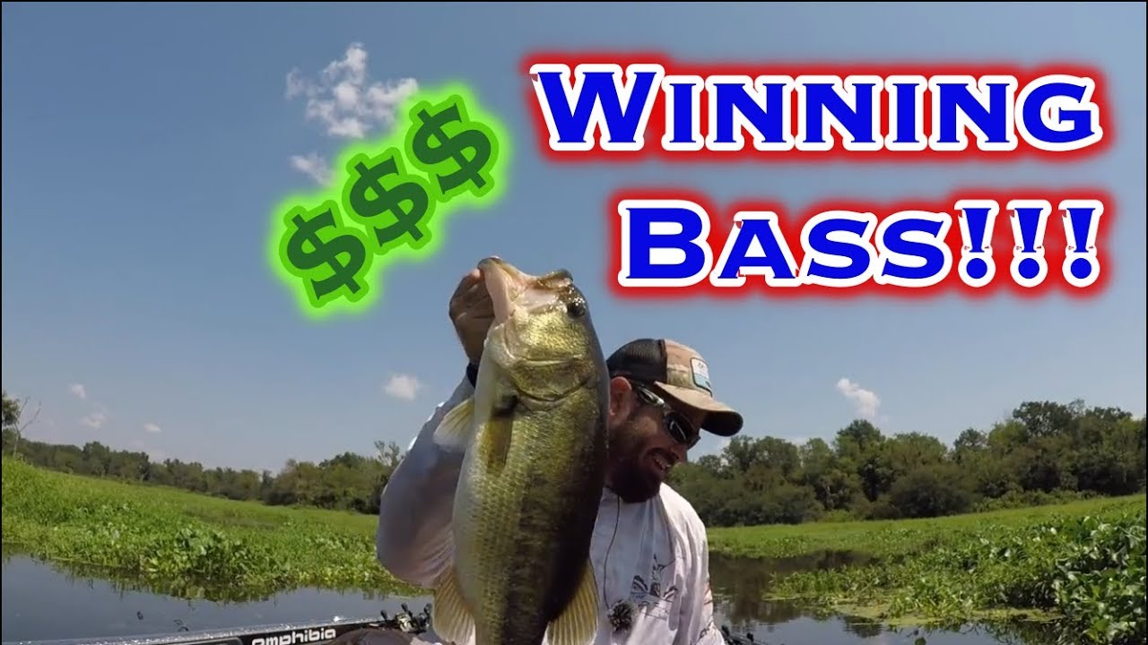 Lake Fork Bass Fishing Tournament Challenge Giant Bass Youtube