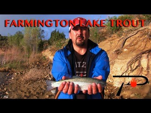New Mexico's Farmington Lake Trout Fishing