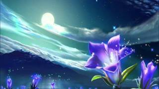 Musique thérapeutique pour dormir 1 - (2/8)