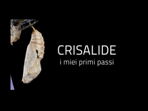 """CRISALIDE """"I MIEI PRIMI PASSI"""""""