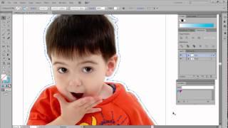 Compare Illustrator vs FlexiSIGN for Contour Cutting & More