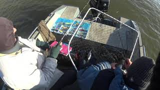 рыбалка на иртыше 2017