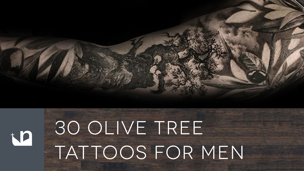 d77485c07 30 Olive Tree Tattoos For Men - YouTube