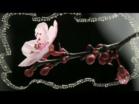 ♥ Ƹ̵̡Ӝ̵̨̄Ʒ ♥  CHOPIN -WALTZ in A minor ♥ Ƹ̵̡Ӝ̵̨̄Ʒ ♥