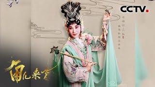 《角儿来了》 20191117 魏海敏| CCTV戏曲