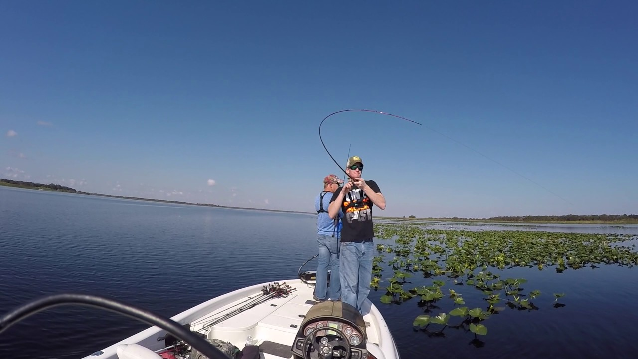 Bass fishing with the bass guy on lake kissimmee youtube for Lake kissimmee fishing report