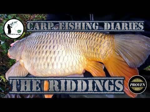 Carp Fishing Diaries Part Two The Riddings