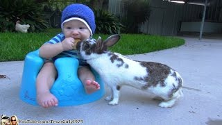 Life's Rough: Bunny Steals Baby's Ritz Cracker