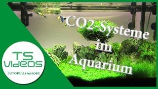 Welches CO2-System für mein Aquarium? Vor- und Nachteile - TSVideos