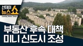 부동산 후속 대책, 효과는…미니 신도시 4~5곳 조성 | 선데이 뉴스쇼 thumbnail