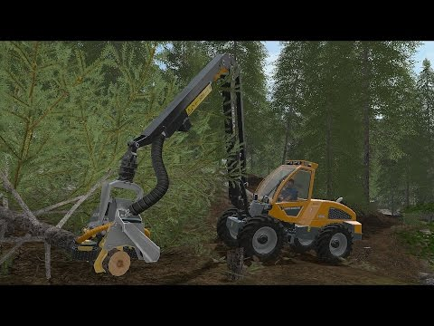 Farming Simulator 17 - Forestry and Farming on Goldcrest Valley 011