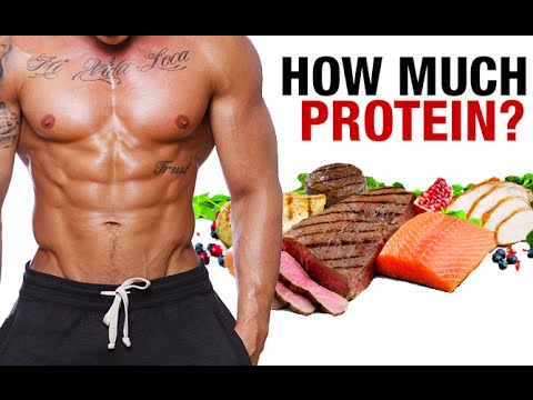 How Much Protein Can You Digest Per Meal? (ABSORPTION MYTH)