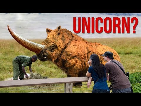 EXTINCT Animals Scientists Want To Bring BACK TO LIFE!