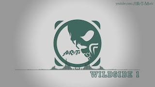 Wildside 1 By Niklas Ahlström -  Electro, Blues Mu