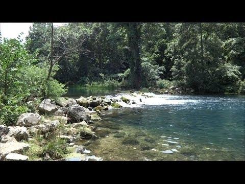 Vlog bennett spring state park missouri fun with for Bennett springs trout fishing