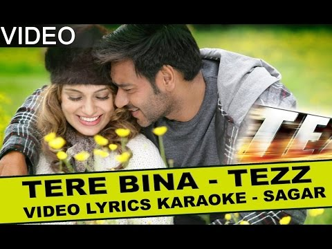 TERE BINA TERE BINA DIL NAHI -  TEZZ -  HQ VIDEO LYRICS KARAOKE