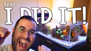 The final stage of a REEF AQUARIUM | Ep.64