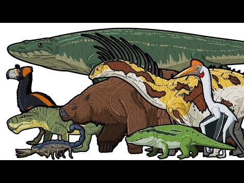 PREHISTORIC LIFE | Animated Size Comparison