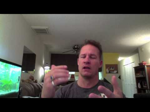Last Alpha Male Video - Crack The Female Code Dating Tips, NLP PUA, Hypnosis!