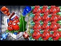 Plants vs Zombies 2 BattleZ-Holly Barrier Pvz 2 in Plants vs. Zombies 2: It's About Time