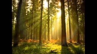 2 Hours of Relaxing Celtic, Meditation and Gothic music