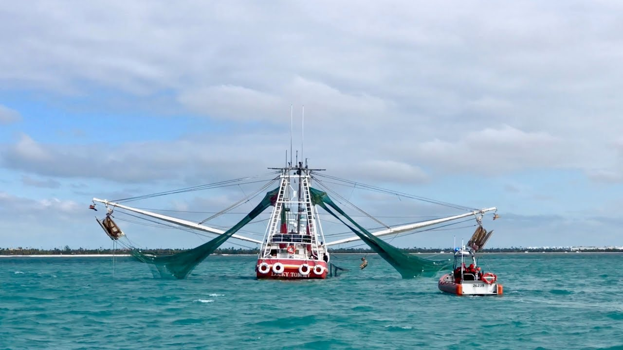 Endless Shrimp 2018 | Lobster House