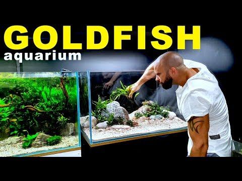 THIS AQUARIUM IS SO GOOD!! | MD FISH TANKS