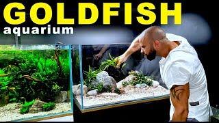 THIS AQUARIUM IS SO GOOD!!   MD FISH TANKS