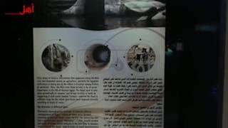 بالفيديو والصور.. أول متحف نوعي في الشرق الأوسط يربط بين مصر ودول حوض النيل.. أنشئ علي مساحة 146 ألف متر مربع.. يضم وثائق نادرة تؤرخ مراحل إنشاء خزان أسوان والسد العالي
