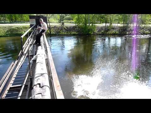 рыбалка на рефтинском форум