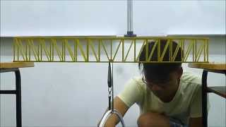 Fettuccine Bridge Test