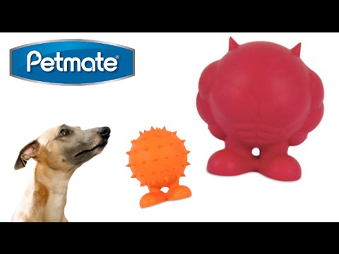 JW Tough Cuz Medium and Small from Petmate