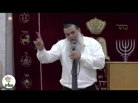 החיים תותים - הרב יגאל כהן HD - שידור חי מהרצליה