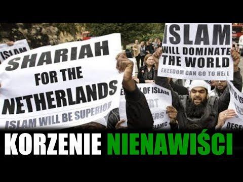 Korzenie nienawiści - Mohammad Tawhidi