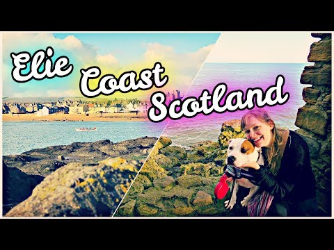 ⛵ OUR FIRST BEACH DAY! ⛱ | Elie, Scotland Travel Vlog