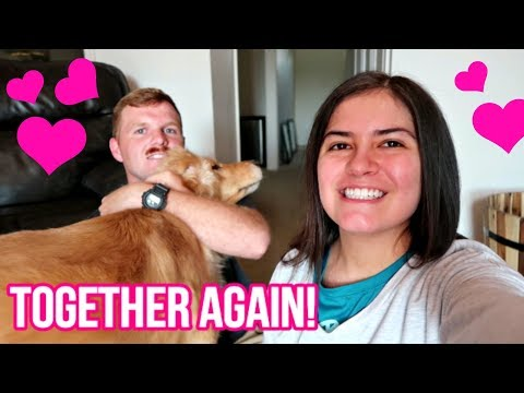 😍 Harlow and Judd REUNITED & Hilarious Doggie Zoomies! 😂 (7/28/18)