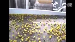 Оборудование для производства хлопьев (Китай)(Промышленное и пищевое оборудование из Китая http://nerudopt.ru/, 2014-09-10T11:51:43.000Z)