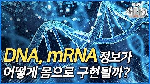 mRNA 백신 이해를 위한 분자생물학의 중심원리(Central Dogma) [안될과학 랩미팅