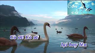 Con cò - Lưu Hà An - Karaoke beat