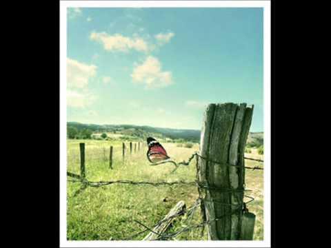 Corinne Bailey Rae - Butterfly