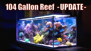 BREATHTAKING Reef Aquarium! - (104 Gallons) ᴴᴰ