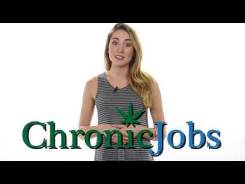 Kent Cannabis Jobs