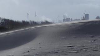 010nu - Duingebied in Hoek van Holland krijgt metamorfose